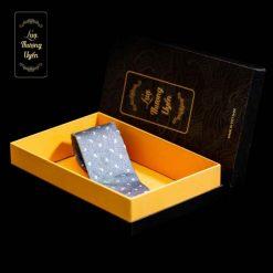 Cà Vạt Lụa Thượng Uyển bản to CT10